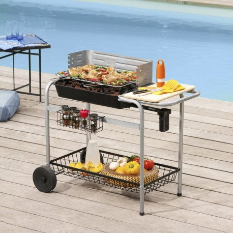 utilisation barbecue weber charbon 28 images barbecue charbon quot performer original gbs. Black Bedroom Furniture Sets. Home Design Ideas