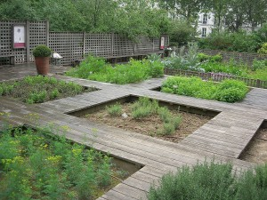 jardin médiéval cluny