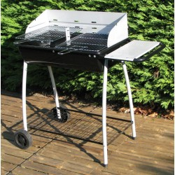 Barbecue Charbon Bois Party Grill