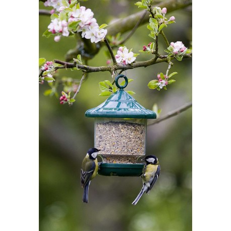 Mangeoire de Jardin pour Oiseaux lanterne