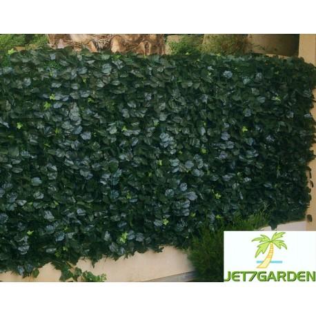 Haie artificielle de jardin en PVC Lierre Duo 300 x 100 cm