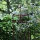 Treillage de jardin en acier rouillé oiseau S 31,8 x 2,3 x 160 cm