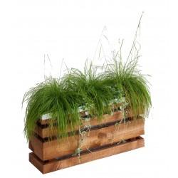 Jardinière en bois rectangulaire Ligne Z 50 x 15 x 25 cm