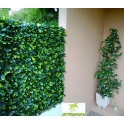 Haie artificielle de jardin en PVC feuilles de Troène 200 x 100 cm