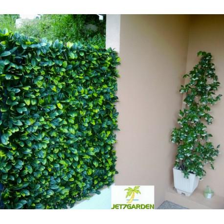 Haie artificielle feuilles de Troène en PVC