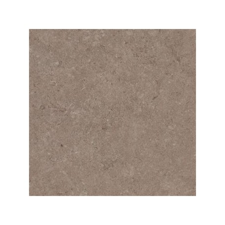 carrelage ext rieur gr s c rame biscuit beige 60 x 60 x 2 cm. Black Bedroom Furniture Sets. Home Design Ideas