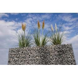 Jardinière en acier rectangulaire gabion 200 x 75 x 100 cm avec galets