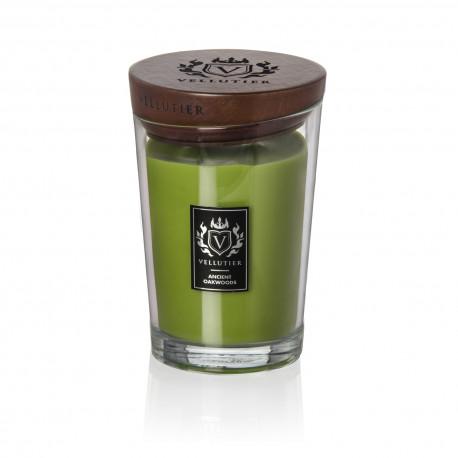 Bougie parfumée Ancient Oakwoods 515 g - Senteurs épicées et boisées