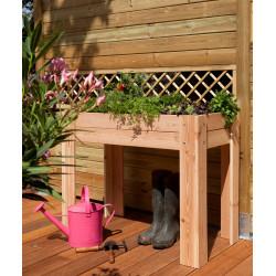 Jardinière pour potager en bois Douglas non traité – 100 x 50 x 80 cm – 66 litres