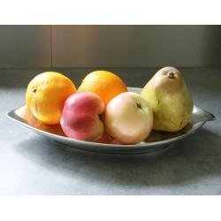 Corbeille fruits design feuille