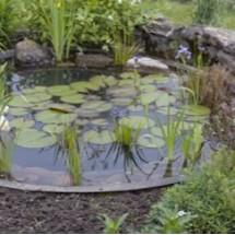 Bassin pour ext rieur et jardin for Bassin exterieur plastique