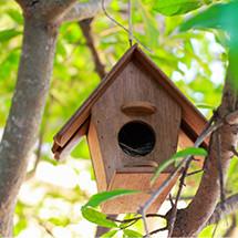 Nichoir - Abri pour oiseaux