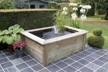 bassin bois