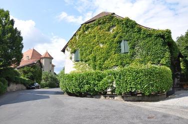 maison avec plantes grimpantes