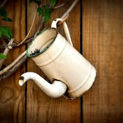 vieux pot à café