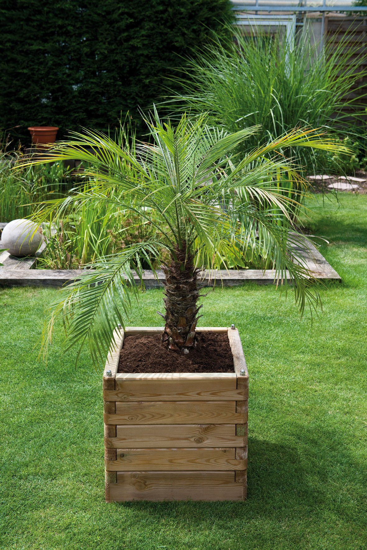 jardini res bois olea robustes et esth tiques amenager ma maison. Black Bedroom Furniture Sets. Home Design Ideas