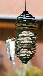 mangeoire à spirales pour oiseaux