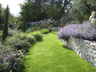 jardin-pelouse